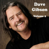 Dave Gibson & Friends - There's A Whole Lot Of Love In This Room