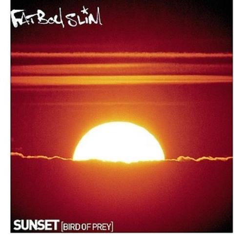 Sunset (Bird Of Prey)