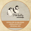 Schulleri & Eiblonski - Papalapapp (Original Mix) mp3