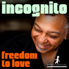 Incognito - Freedom To Love (Reel People Rework) - SNIPPET