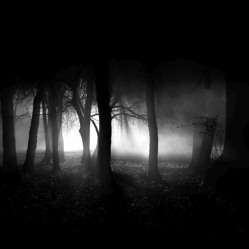The Ghost Part II - Kresko