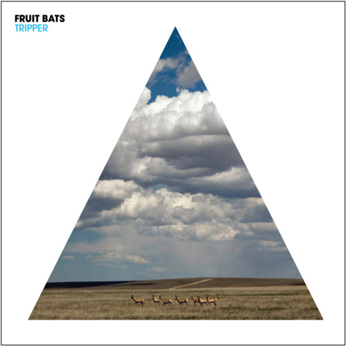 Fruit Bats - You're Too Weird