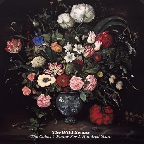 The Wild Swans - Chloroform