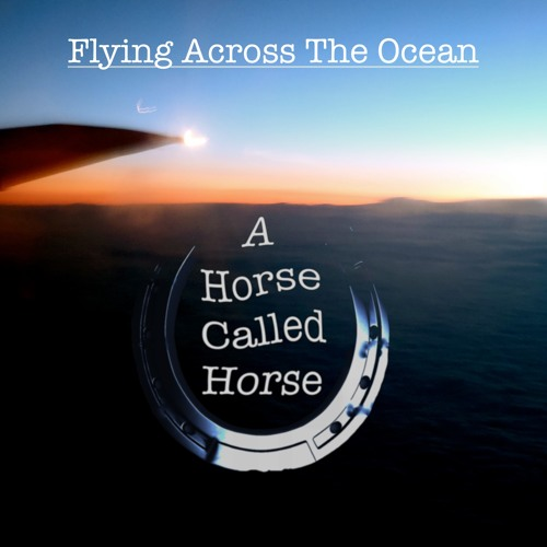 A Horse Called Horse - Flying Across The Ocean (Waiting To Land)