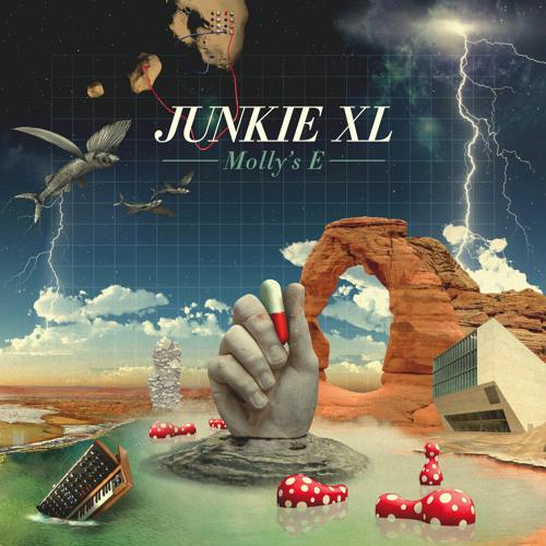 Junkie XL - Molly's E