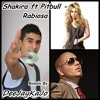 Shakira ft Pitbull - Rabiosa ( DeeJayKaJo Club Remix )