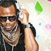 THE SETTLEMENT SUMMER DANCEHALL MIX 2011-DEE JAY HYPE