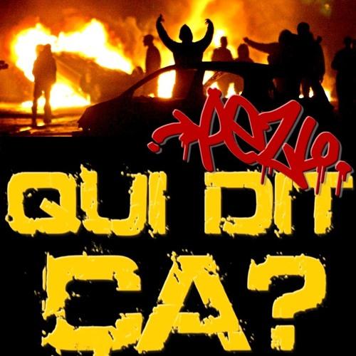 QUI DIT CA? - Remix Kool Shen (2011)