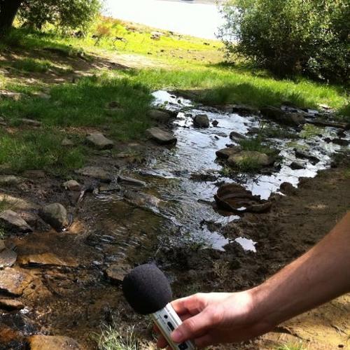 stream Yorkshire 08/22/2011