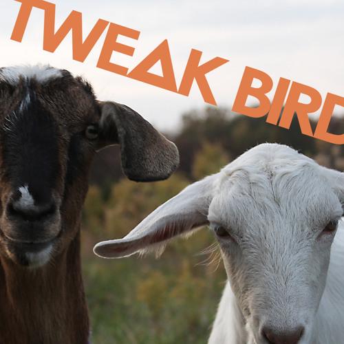 Tweak Bird - Forget Em