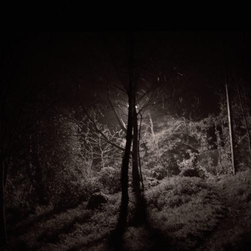 Alpines - Cocoon (colo remix)