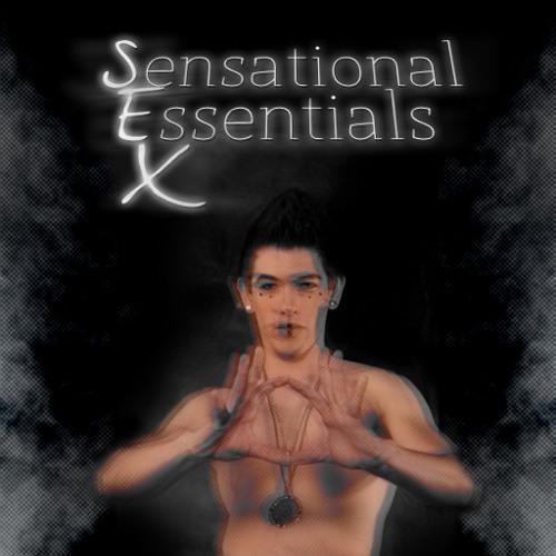 Sensational Essentials X, Vol. 2