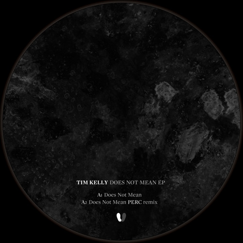 "Tim Kelly - Does Not Mean - Does Not Mean EP (12"") - Silent Steps"