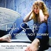 Taylor Swift - You're Not Sorry (wakes d&b remix)