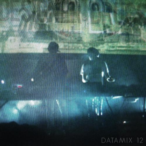 DATAMIX 12