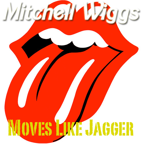 Moves Like Jagger (Acoustic)