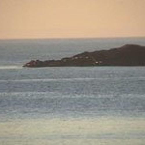 Grey Seals Singing 2008