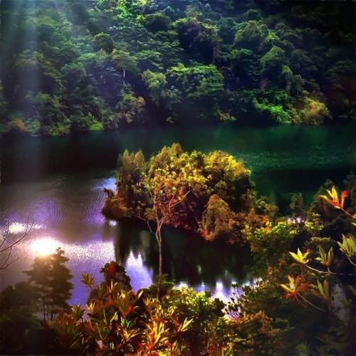 everglade - Glowing Bars
