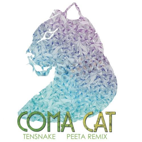Tensnake - Coma Cat (Peeta Remix)