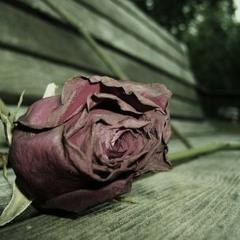 Instrumental streetkiller - Sad Love Story (prod by streetkiller) beat for sale