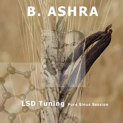 KWDIGI001 B Ashra - LSD Tuning (Pure Sinus Session)
