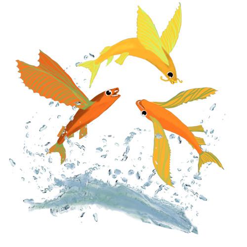 Grønflammeskoven - Fiskeflyselskab