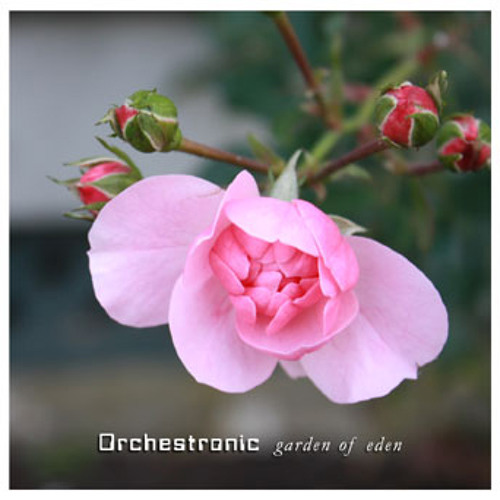 """Garden of Eden"" by Orchestronic"