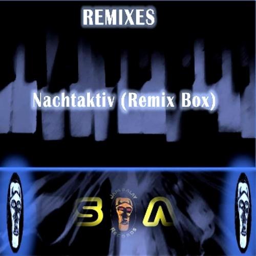 Nachtaktiv - Electronic Beach ( Remix )