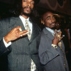 Wanted Dead Or Alive - 2pac & Snoop Dogg  (ASYLUM REMIX)