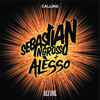 Sebastian Ingrosso & Alesso - Calling (Preview)