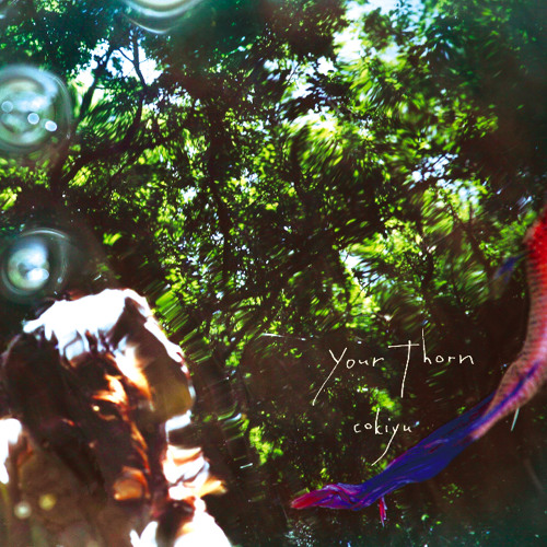 Cokiyu - Your Thorn