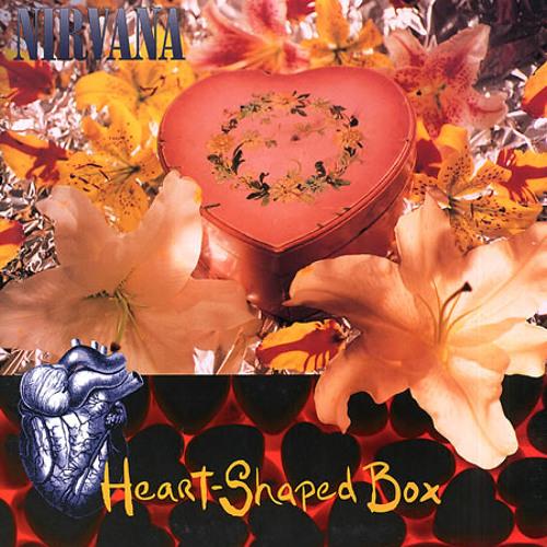 Nirvana - Heart-Shaped Box (Animalis Rmx)