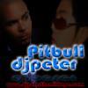 DjPeter TheMix Tape Ft Pitbull  I Know You Want Me Remix