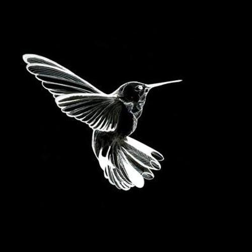 The hummingbirds (original)