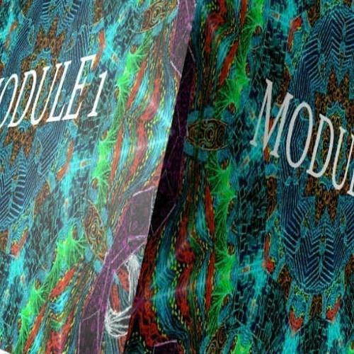 Module 1 (Featuring Astrum)