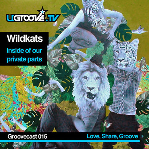 Groovecast 014 - WiLDKATS - Inside Of Our Private Parts