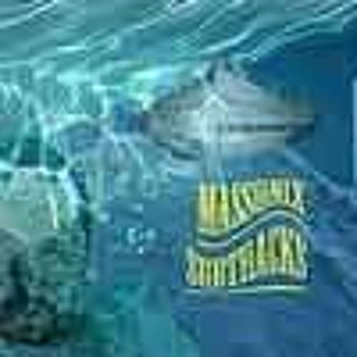 03 Debussa (Undersea Danube)