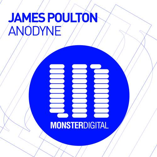 James Poulton - Anodyne