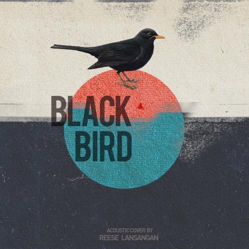 Blackbird (The Beatles Cover)