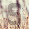 Skinny Love (Bon Iver Cover)