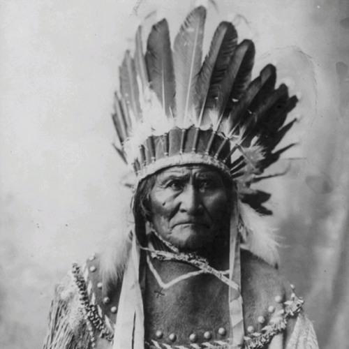 Pecoe - Apache Champ