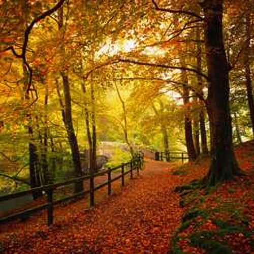 Oliver Schories - My Autumn (Mixtape September 2011)