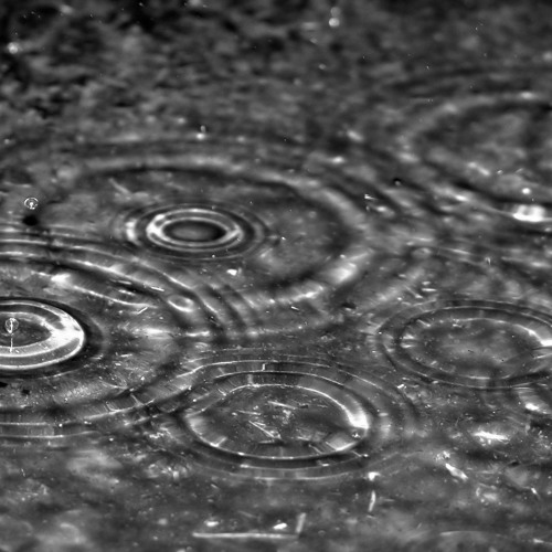 I am the gentle autumn rain