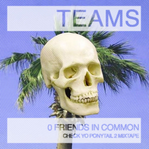 TEAMS - 0 FREINDS IN COMMON - CHECK YO PONYTAIL 2 MIXTAPE