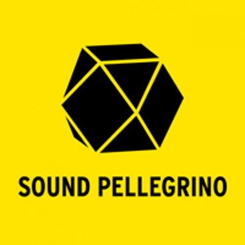 SoundPellegrinothermalTeam_Bassface(WalterRemix)