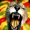 Johnny B Good - Lion Heart Riddims