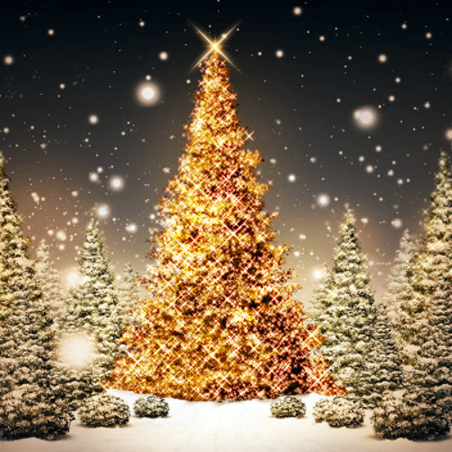 Carl Ashwin - Christmas Theme 2010