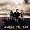 Breathe - Mean Mr Mustard