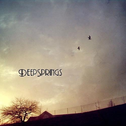 DeepSprings