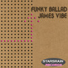 James Vibe - Funky Ballad -> Out now ! mp3